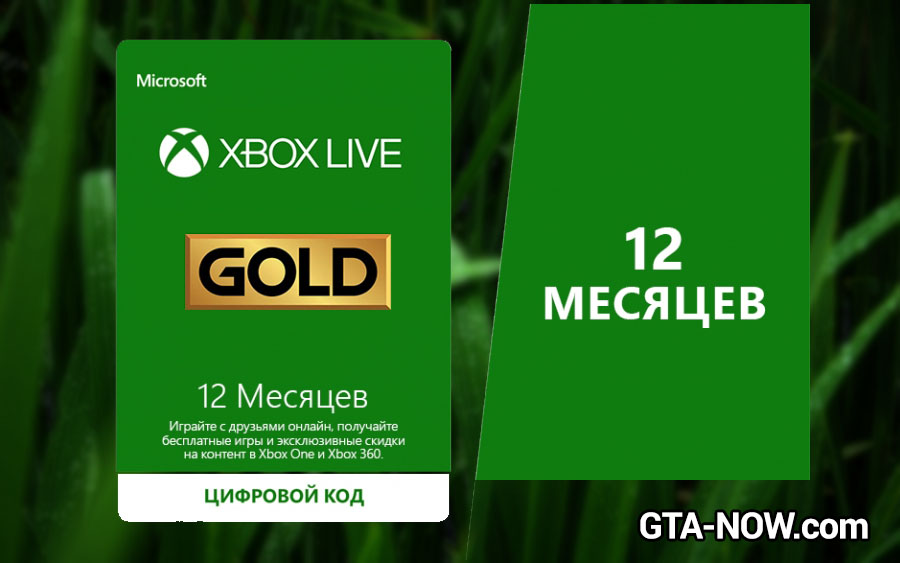 Xbox Live Gold 12
