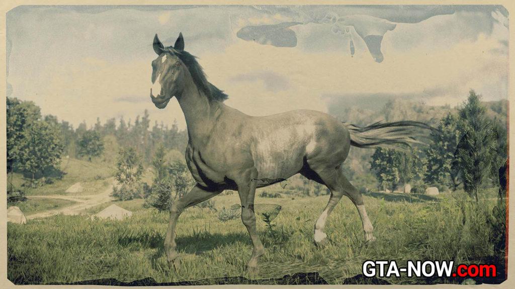 Теннессийская лошадь
