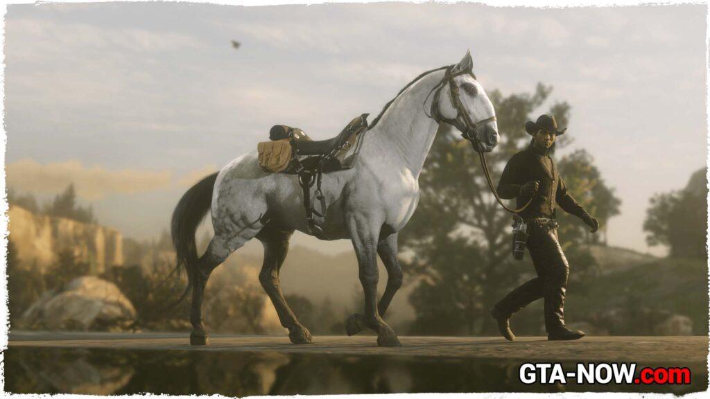 Скидка на лошадей