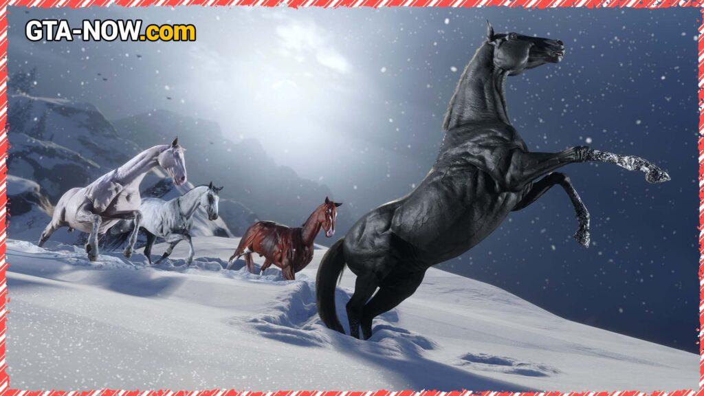 Новые лошади