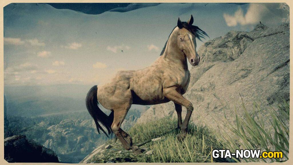 Мультиклассовые лошади